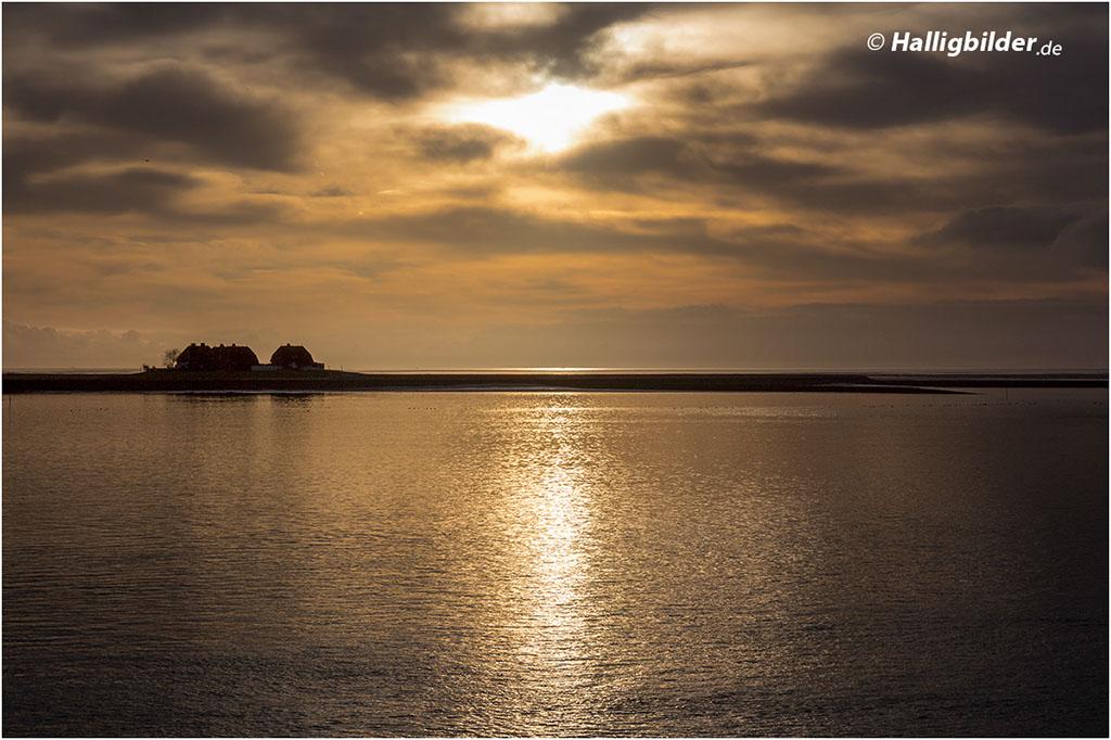15:39 Uhr | Westerwarft (Hallig Hooge) bei Sonnenuntergang