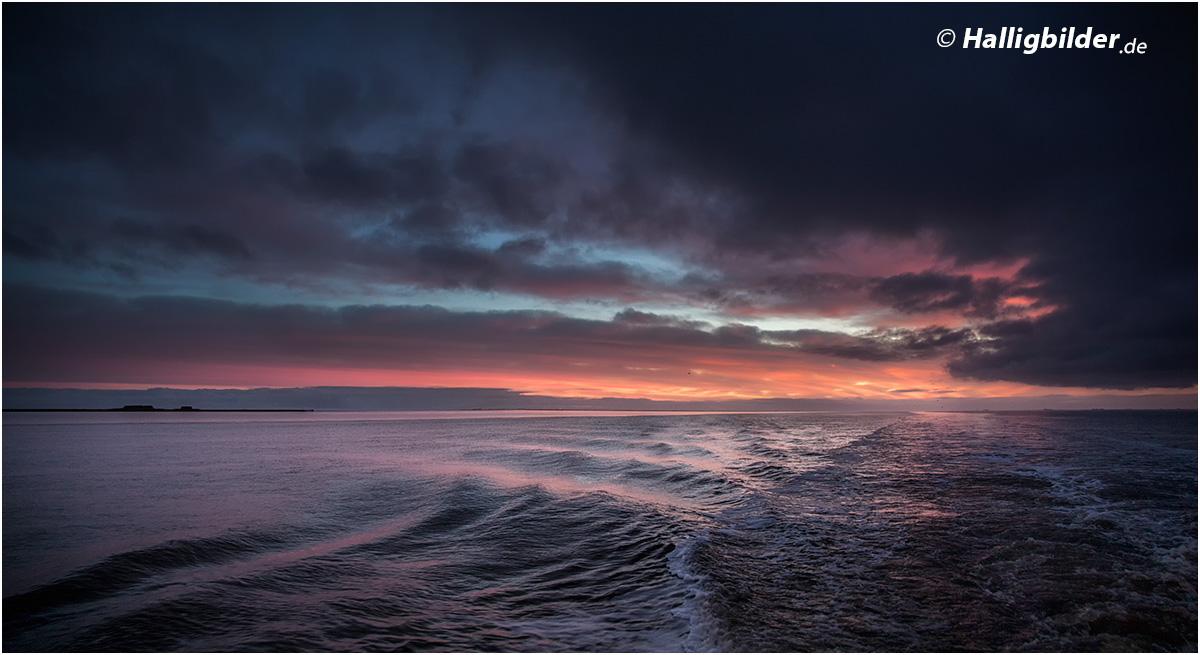 16:47 Uhr | Fahrt durchs Wattenmeer (links die Hallig Gröde)