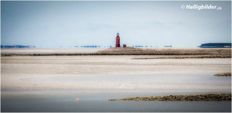 Leuchtturm Hallig Langeneß (am Horizont die Inseln Amrum (li.) und Föhr (re.) )