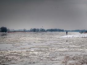 | Hitzacker/Elbe | ...am Elbestrand im Januar