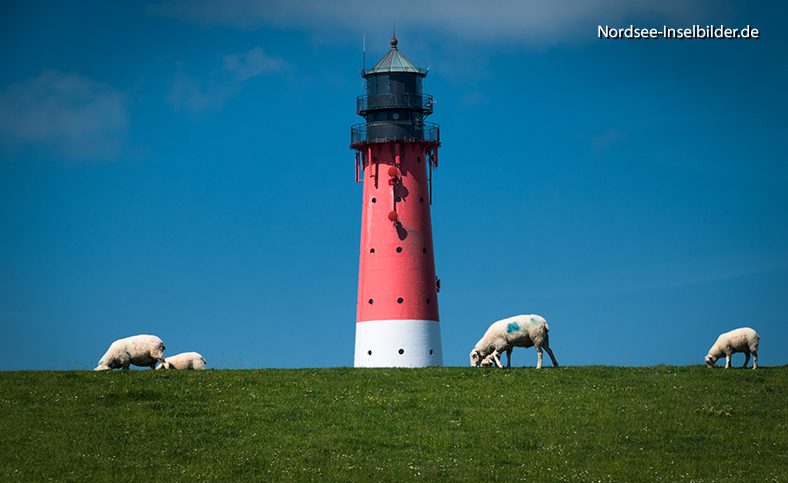 | Nordseeinseln | Pellworm | ...Pellwormer Leuchtturm, erbaut 1907
