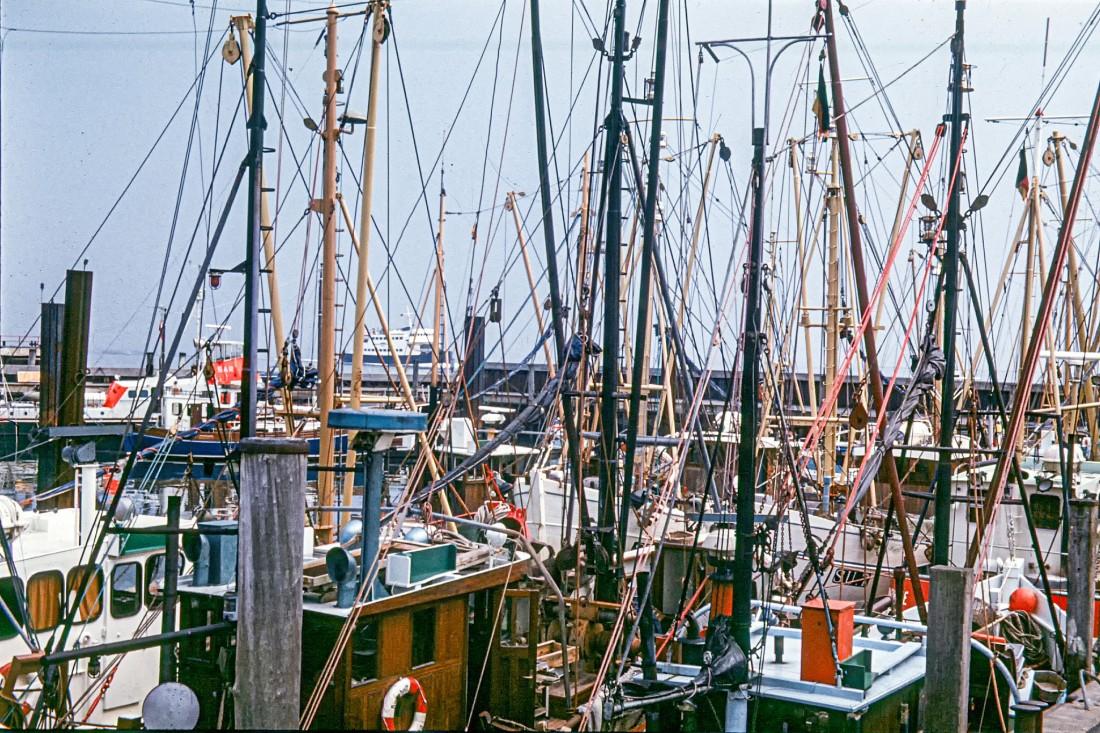 im Lister Hafen - Aug. 1973