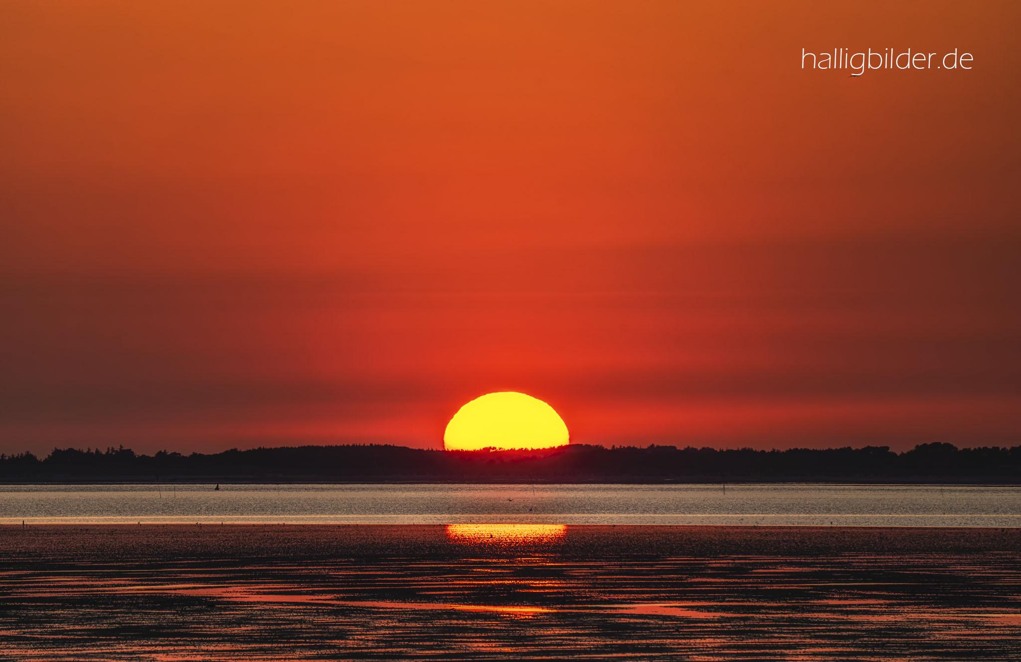 Die Sonne versinkt um diese Jahreszeit fast im Norden, hinter der Insel Föhr