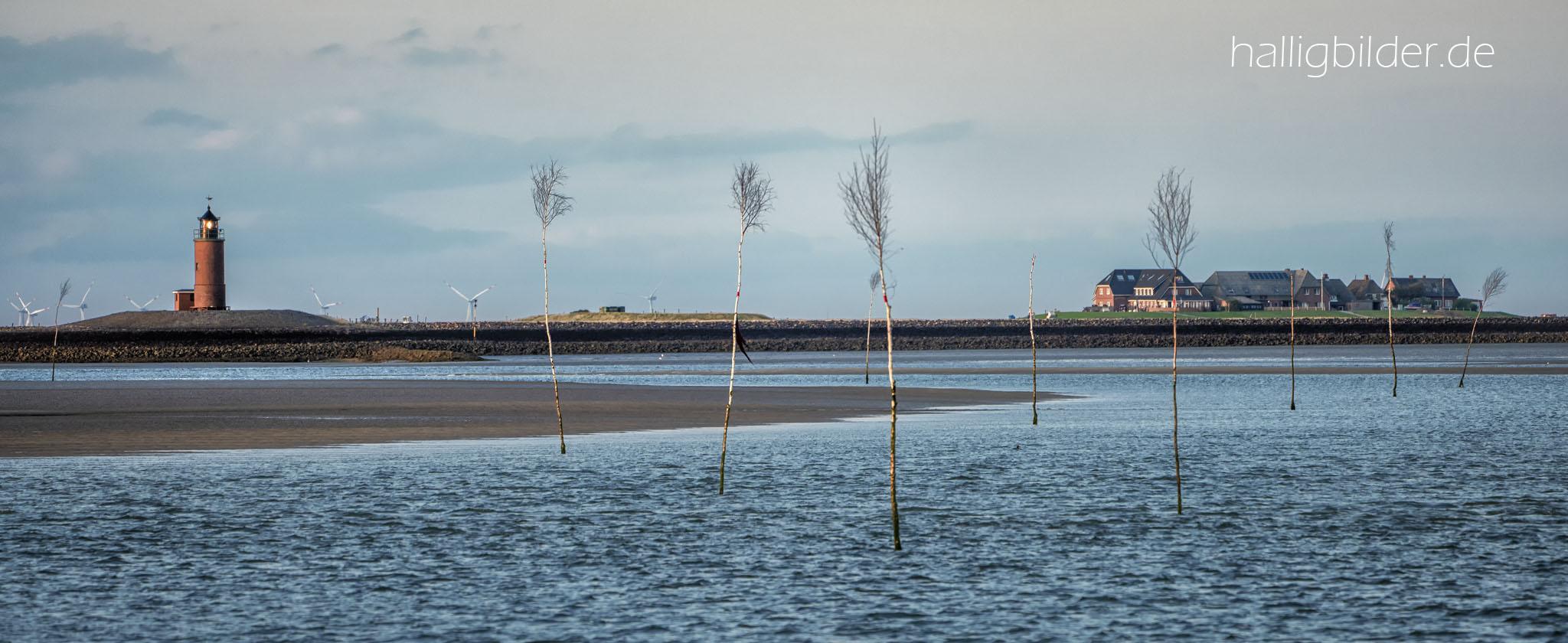 Fahrwasser-Pricken (Birkenbäumchen)  begrenzen die Fahrrinne im Wattenmeer, li. Hallig- Leuchtturm, re. Mayenswarf