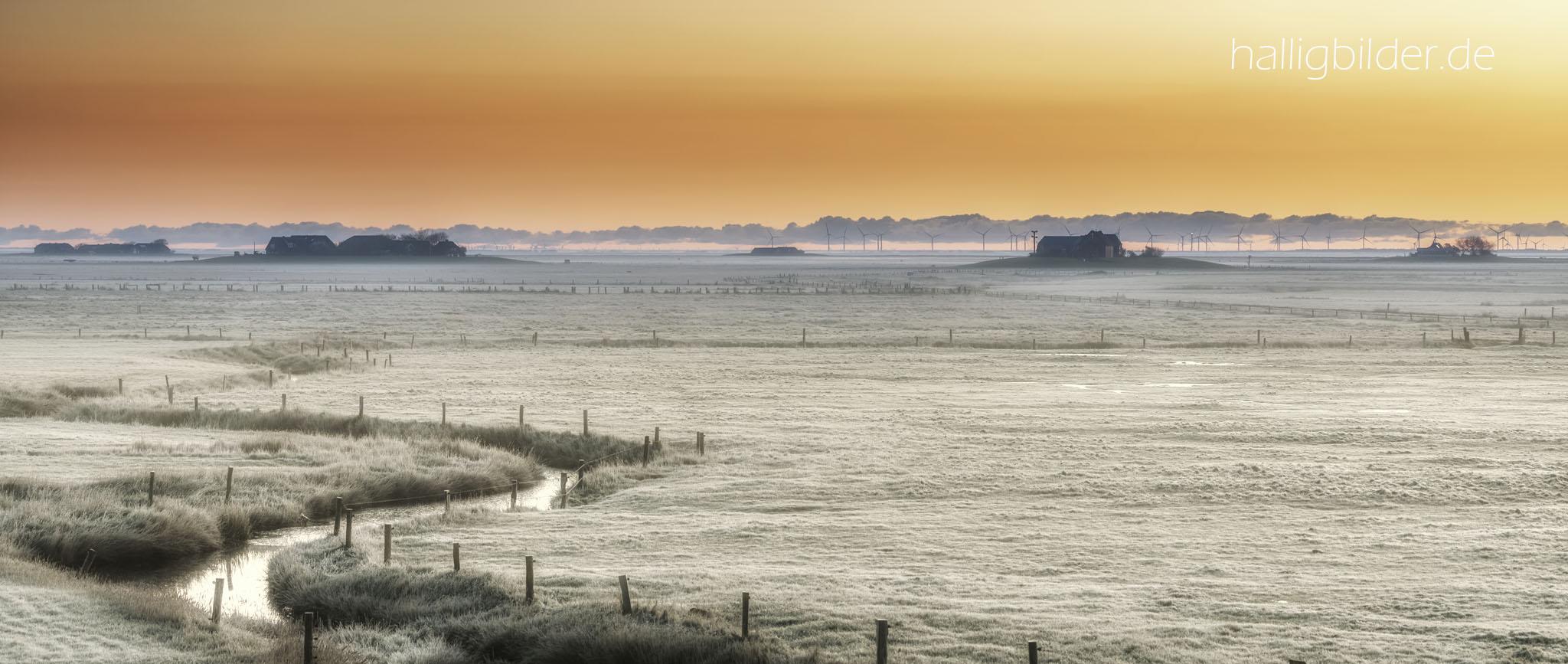 Morgens bei Sonnenaufgang, Raureif bedeckt noch das Halligland