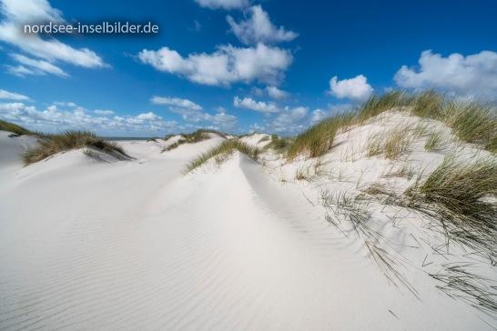 Amrum | ...Stranddünen zwischen Nebel und Norddorf