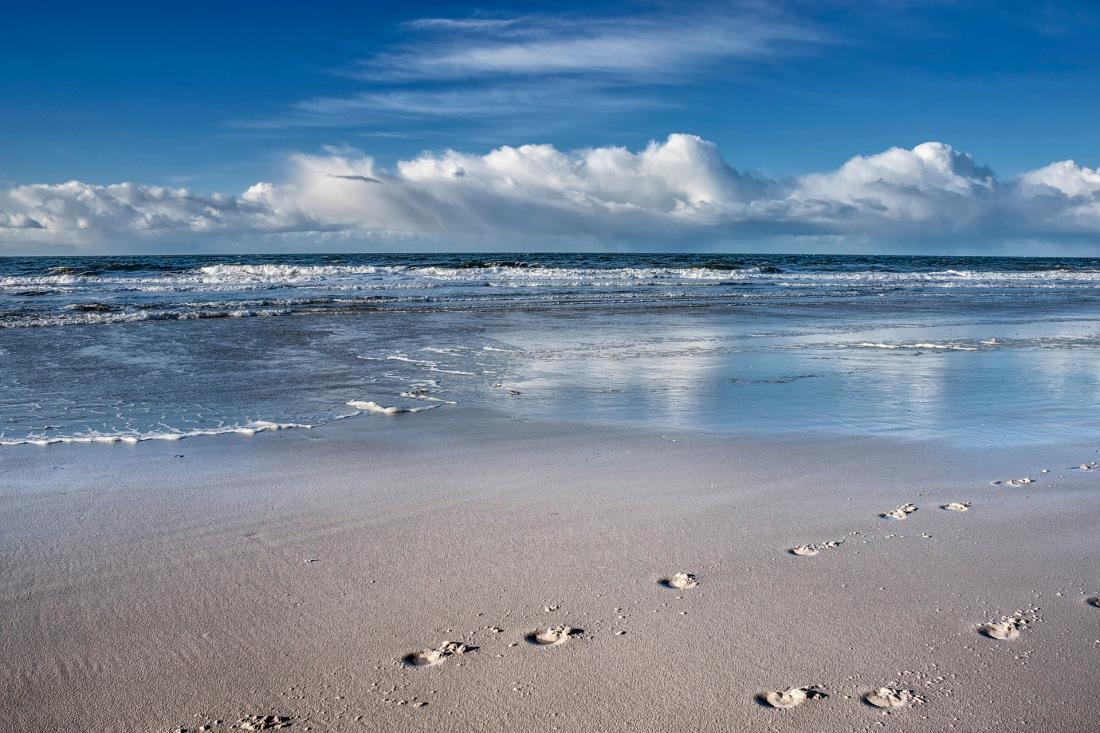 Amrum | . . . Spuren im Sand